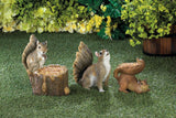 Woodland Squirrel Bird Feeder - Distinctive Merchandise