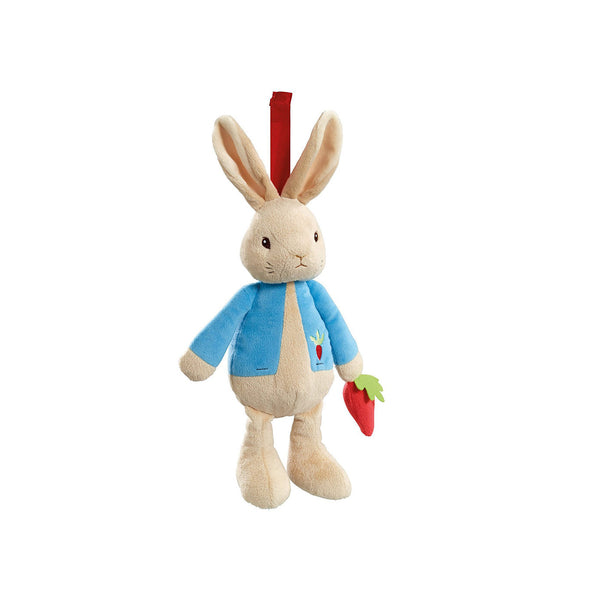 Peter Rabbit Musical Soft Toy - Toys will be Toys