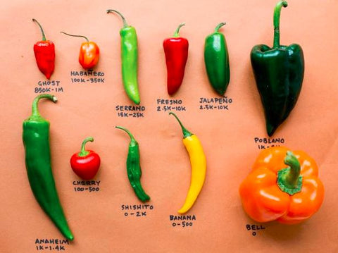 Scoville scale for peppers by chef's satchel
