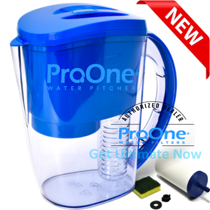 ProOne Fruit and Vegetable Infusing Water Filter Pitcher