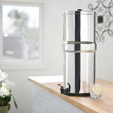 Berkey RB4X2-BB Royal Stainless Steel Water Filtration System with 2 Black Filter Elements