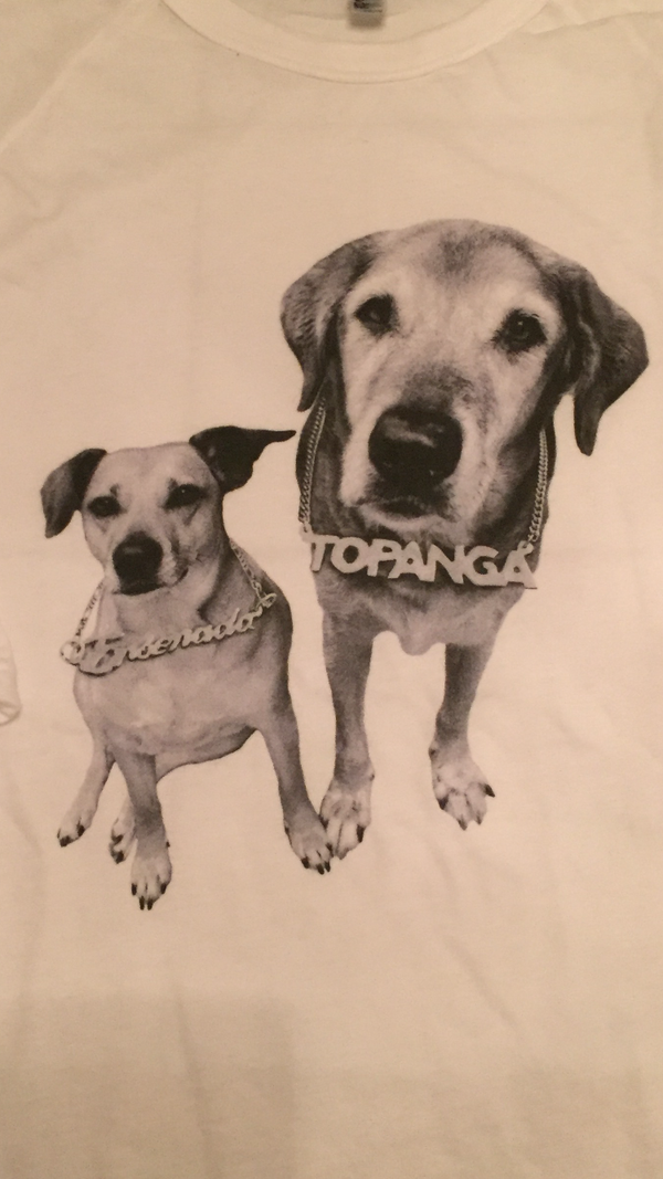 Women's Tunic T-Shirt - Two Dogs