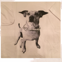 Women's Tunic T-Shirt - Small Dog