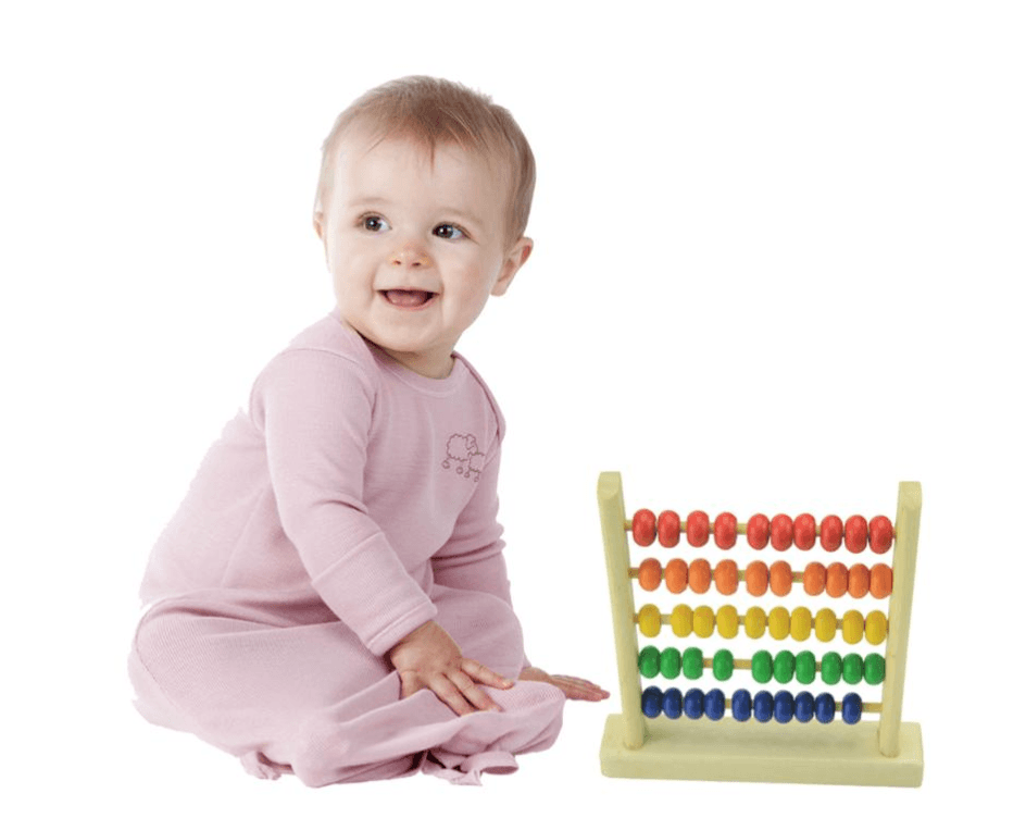 Abacus Calculator Wooden Educational Toys