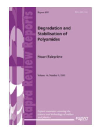Degradation and Stabilisation of Polyamides
