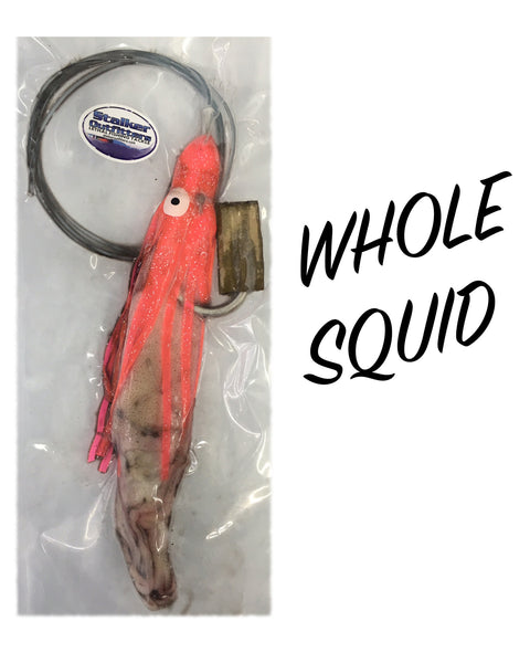 Whole Squid*