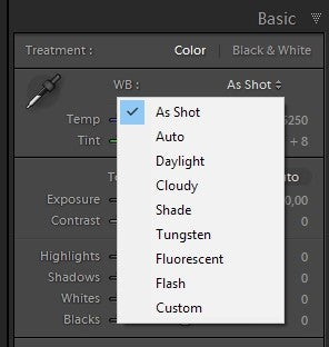 Professional Lightroom presets and Photoshop actions