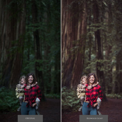 Oak & Ivy Lightroom Presets