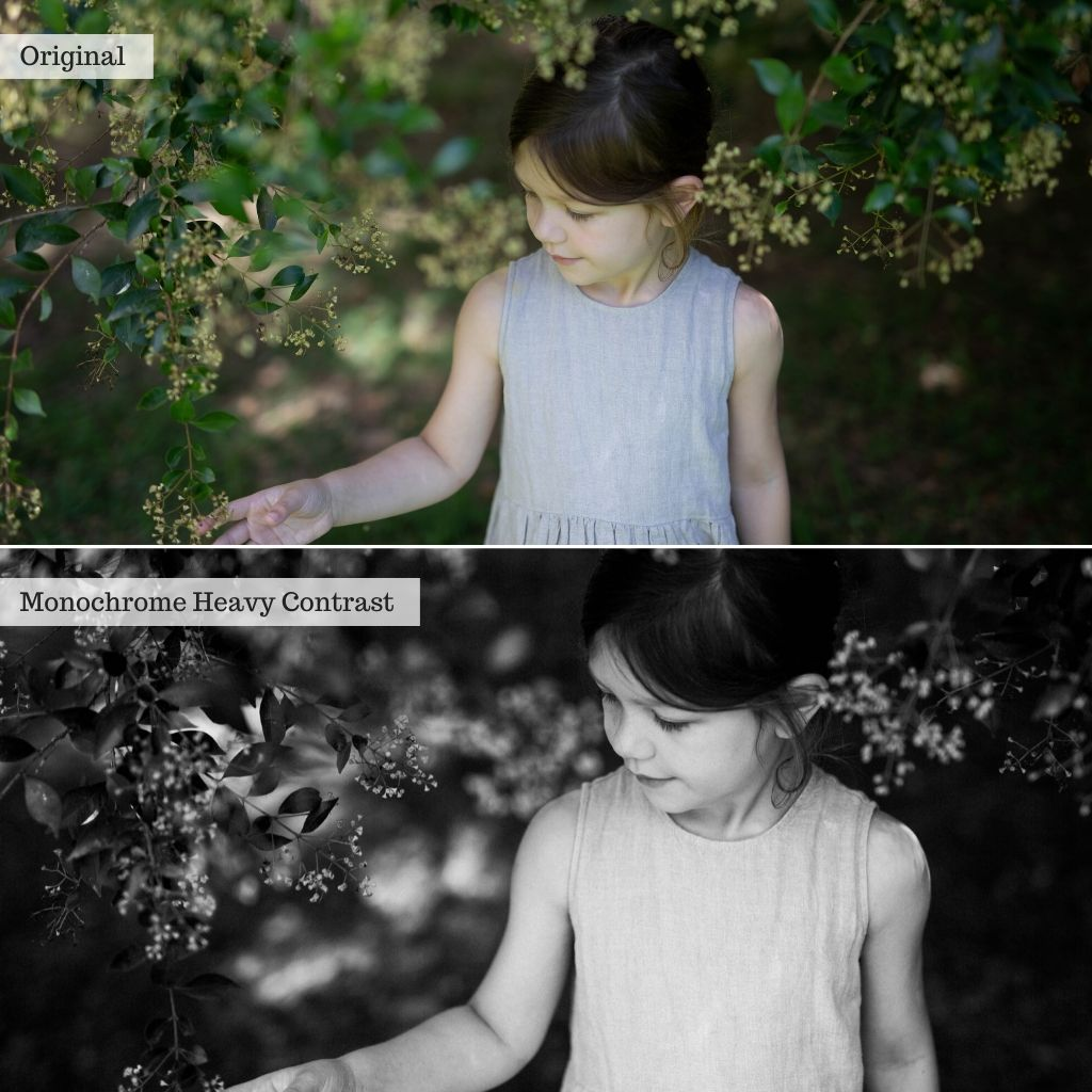 Enchanted Gardens Lightroom Presets