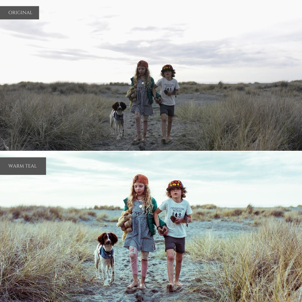 Cinematic Film Lightroom Presets – Desktop & Mobile
