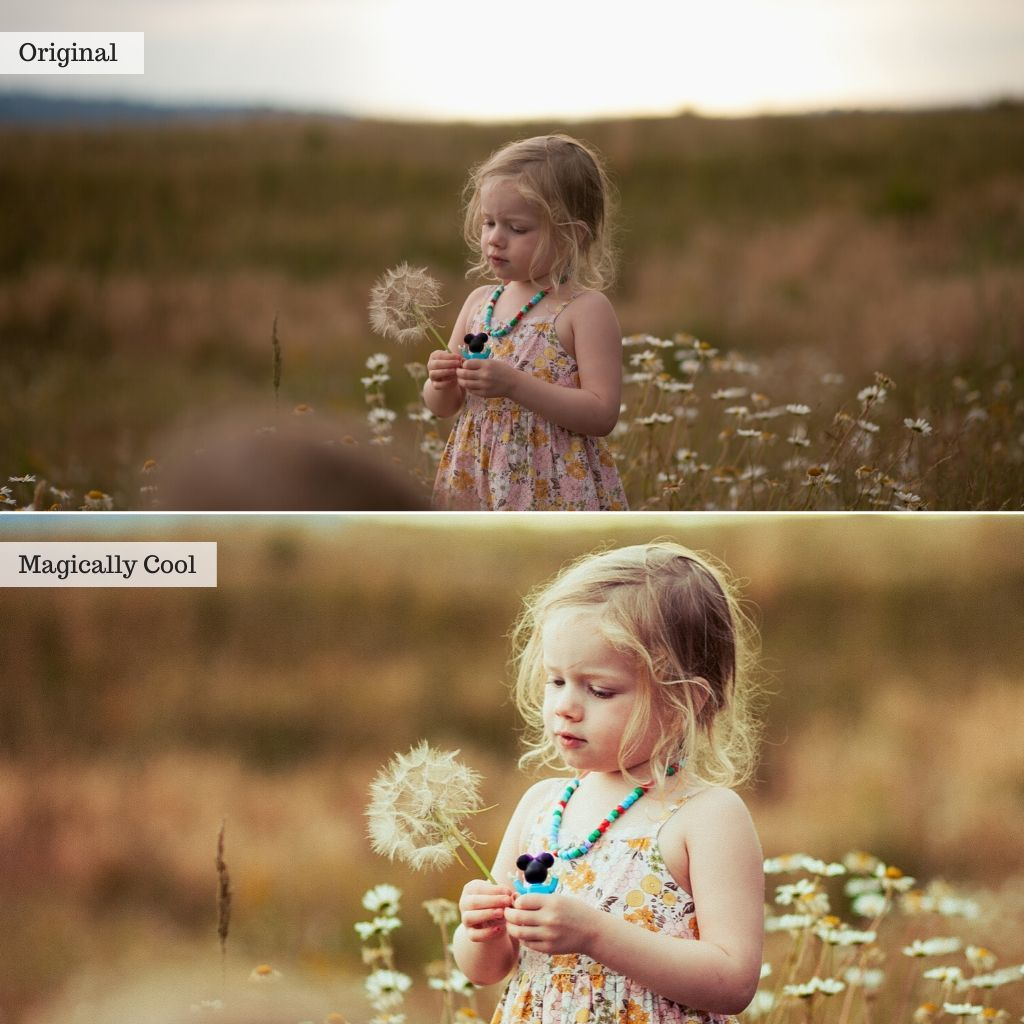 Fairytales Lightroom Presets
