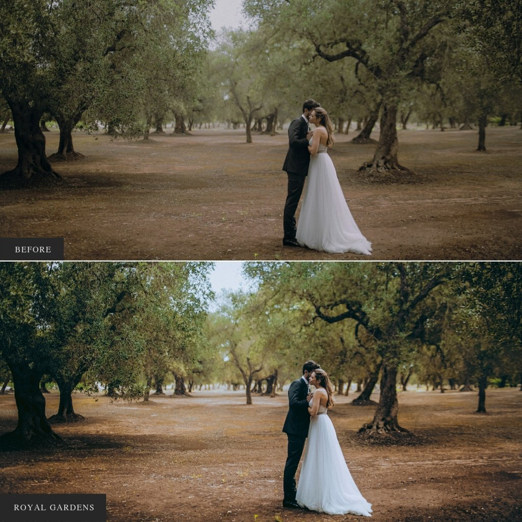 Royal Gardens Single Palette Lightroom Presets