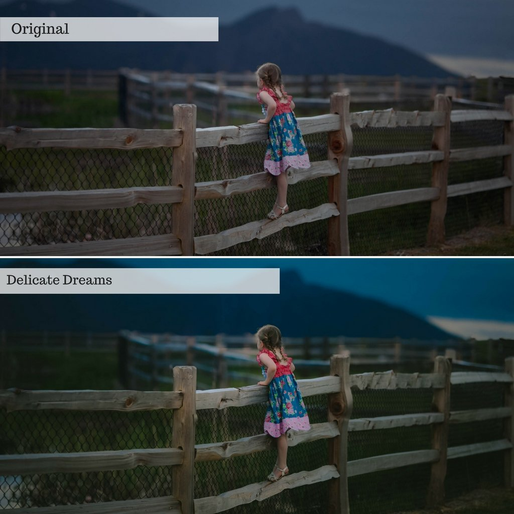 2020 Everything, Entire Store Lightroom Preset Bundle (37 Collections)