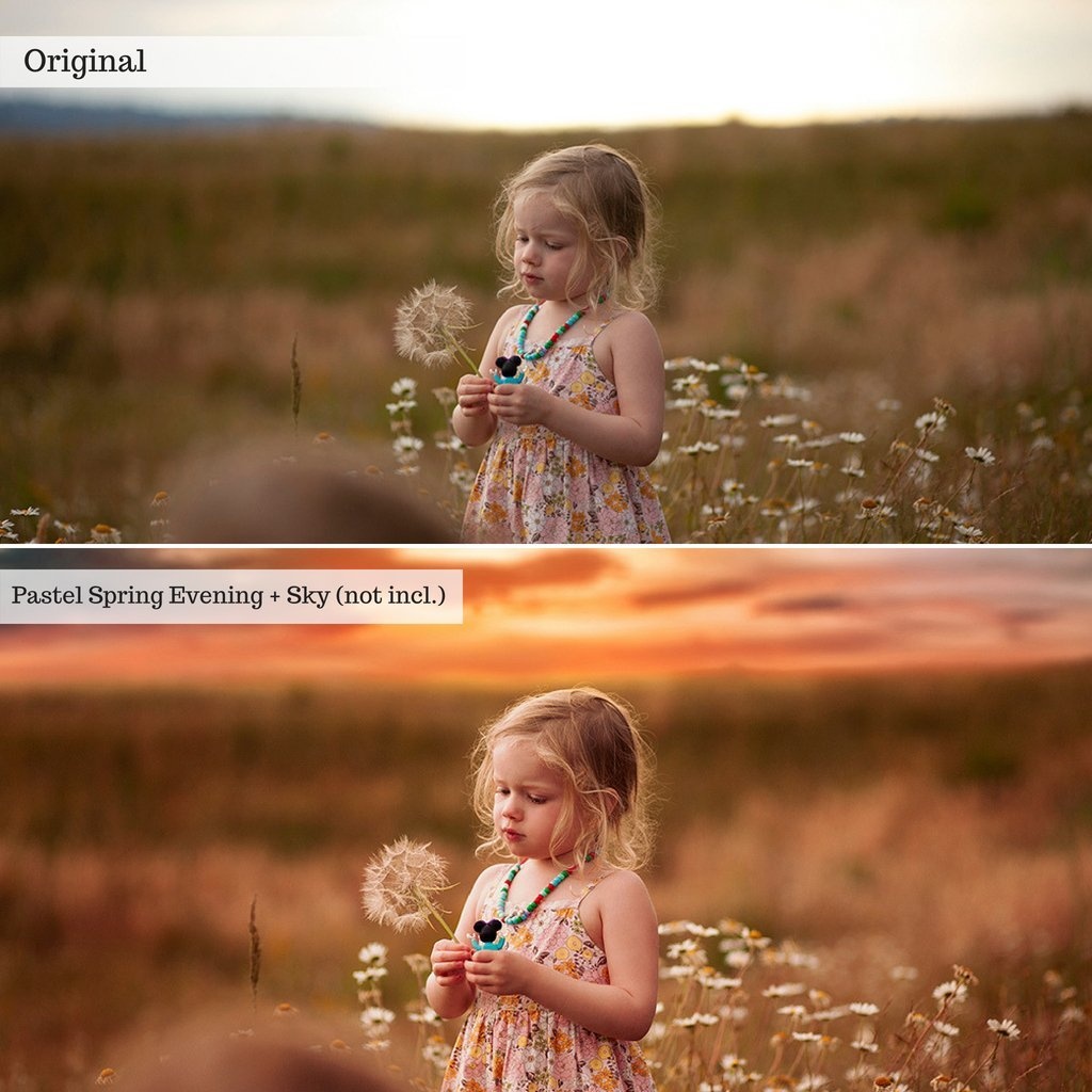 Everything Actions Bundle (9 collections) Photoshop or Elements
