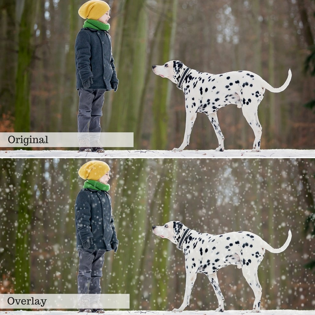 Snow Overlays – Photoshop & More