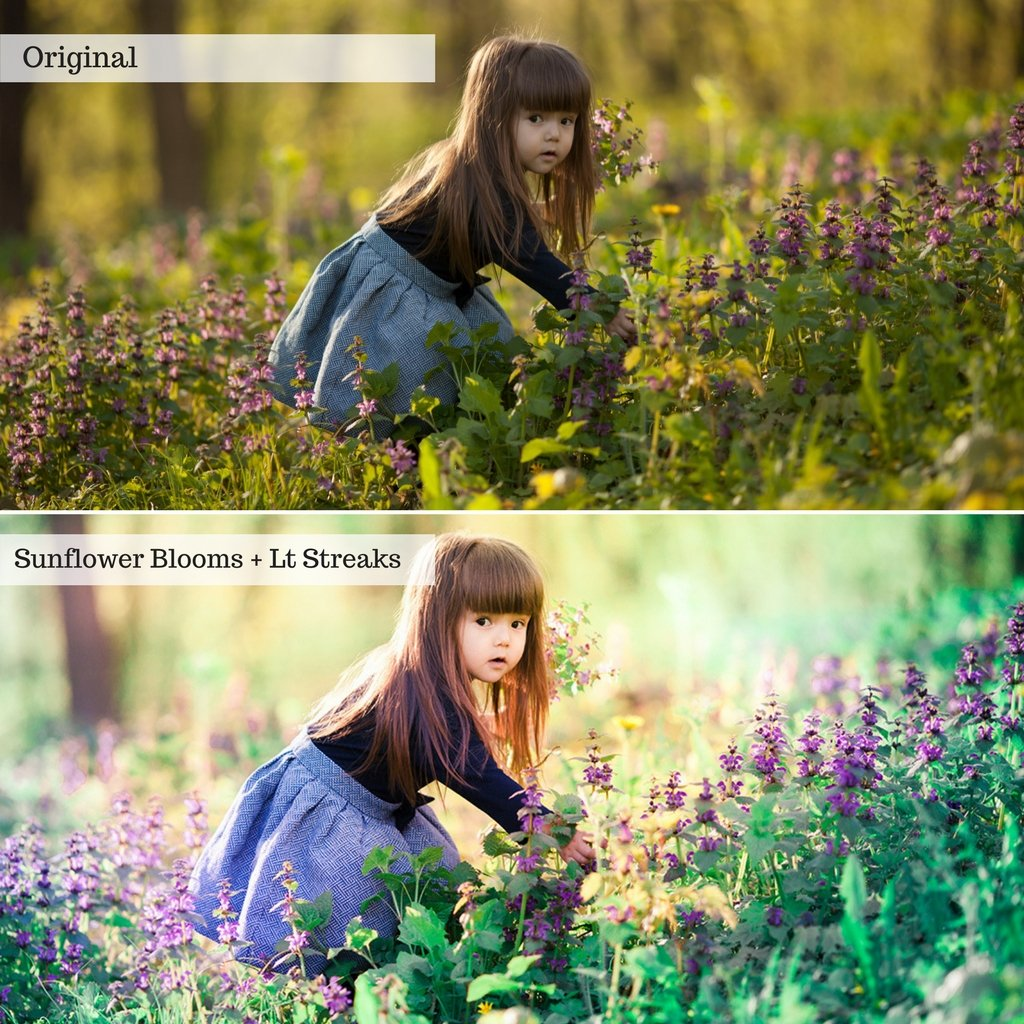 Buds & Blooms Spring Lightroom Presets – Desktop & Mobile