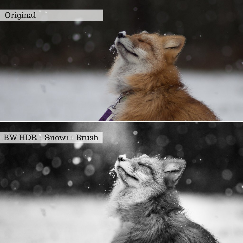 Let it Snow! Winter Lightroom Presets