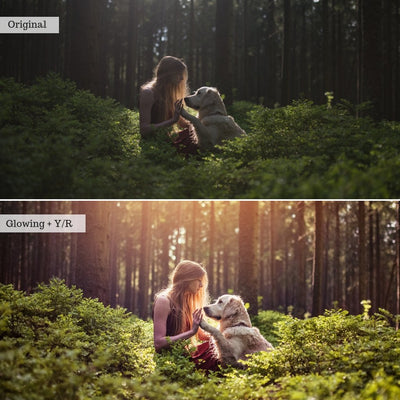 Best Sellers Preset Bundle (6 collections) for Lightroom & Photoshop