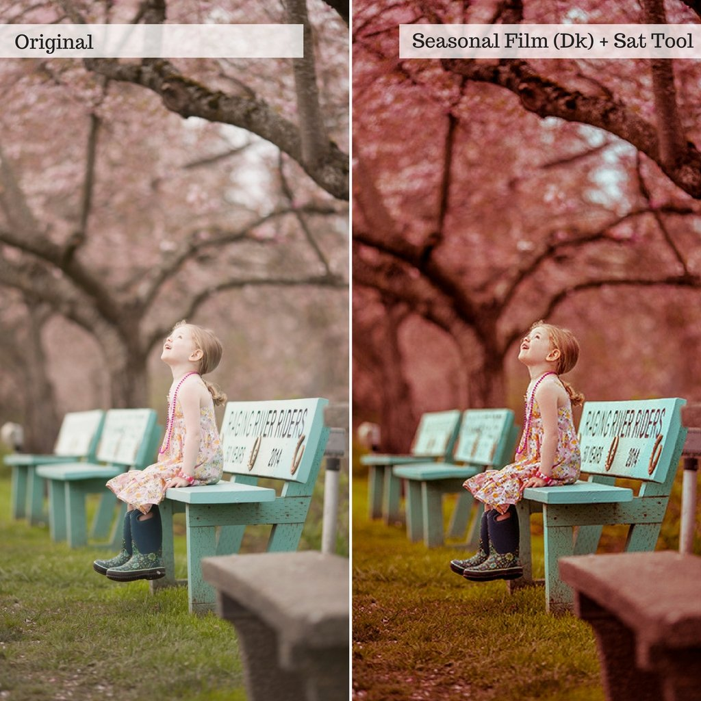 Buds & Blooms Spring Lightroom Presets