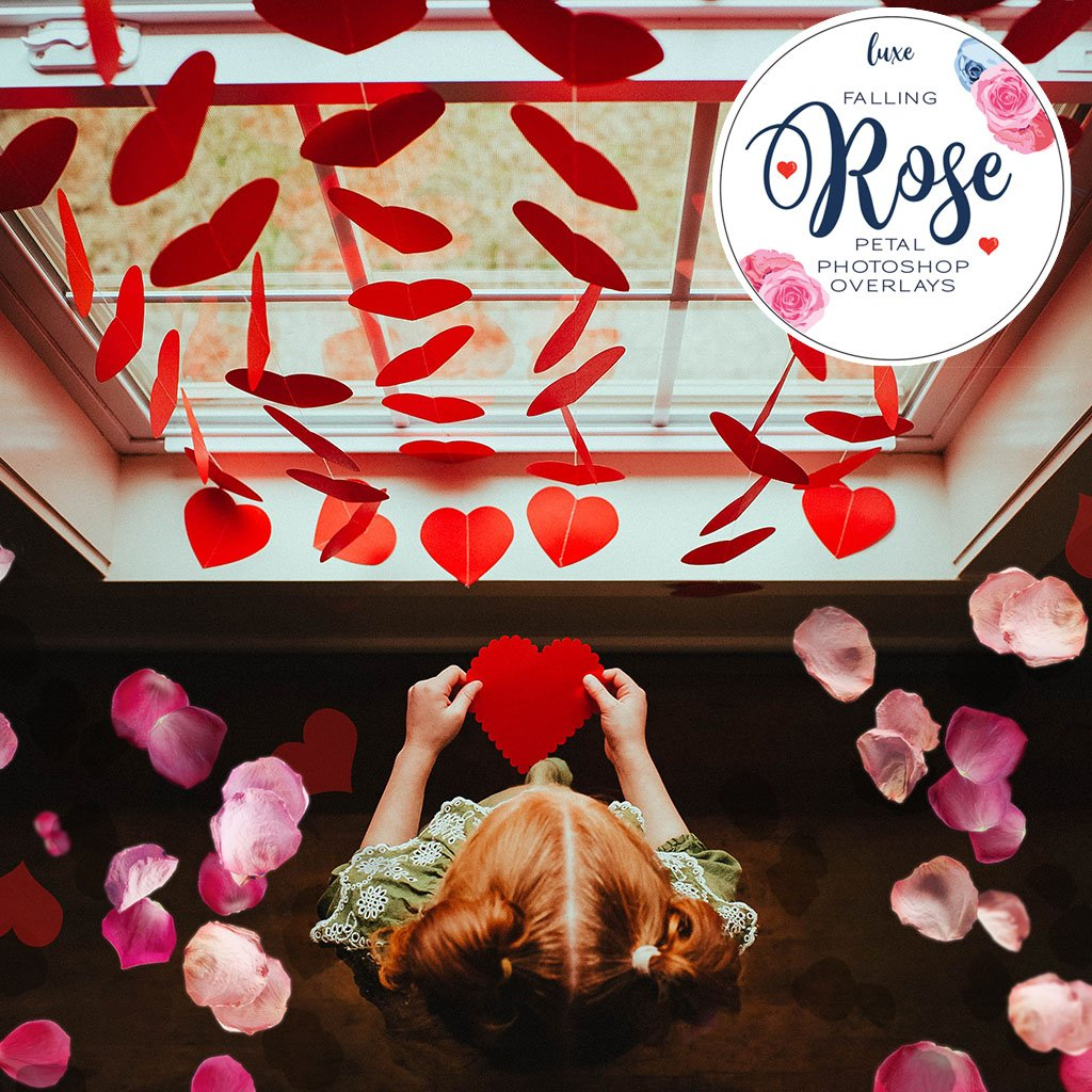 Falling Rose Petals Overlays – Photoshop & More