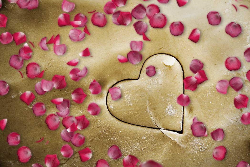 Falling Rose Petals Photoshop Overlays