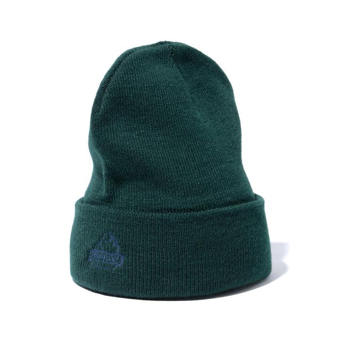 XCARROTS CUFF BEANIE - FORREST GREEN