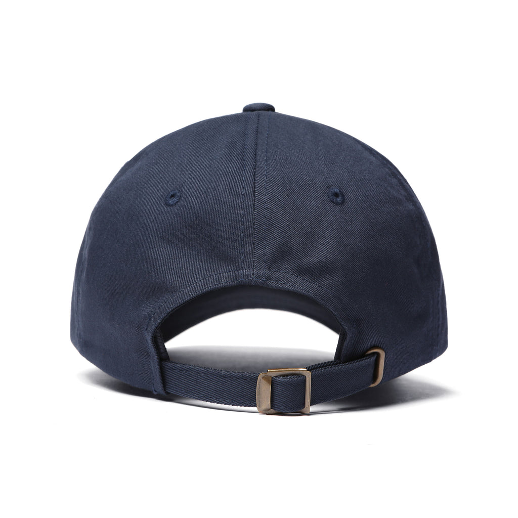 CARROTS UNIVERSITY BALL CAP - NAVY