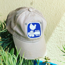 Blue Bird Patch Cap