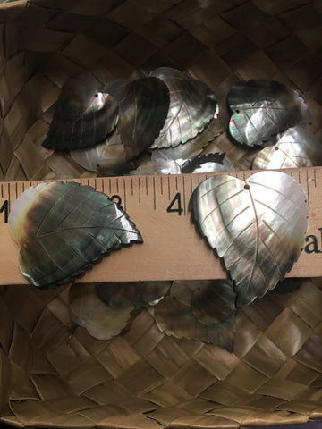 Mother of Pearl Blacklip Wide Leaf Shell