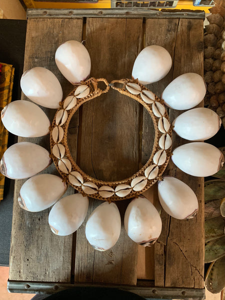 Giant White Tortouise Shell Collar Necklace