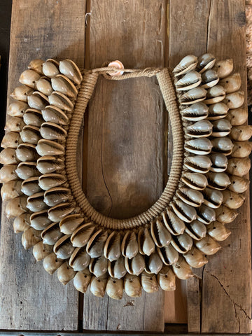 Olive Shell Collar Necklace