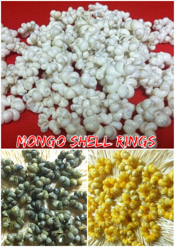 Shell Rings- Mongo Shells