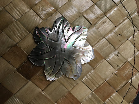 Mother of Pearl Blacklip Ninja Star Shell