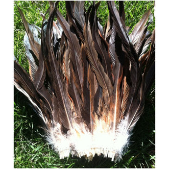 "Rooster Tail Feathers 12-14"" long Natural Colors"