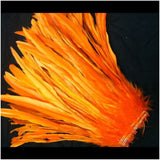 "Rooster Tail Feathers 12-14"" long"