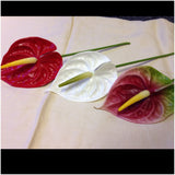 Real Touch Anthurium Flower Pick