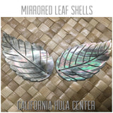 Mother of Pearl Blacklip Large Leaf Shell