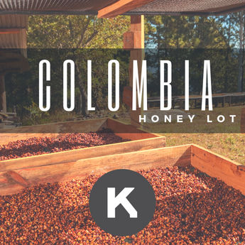 Colombia Honey Lot