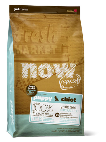 NOW FRESH™ Grain Free Large Breed Puppy Recipe