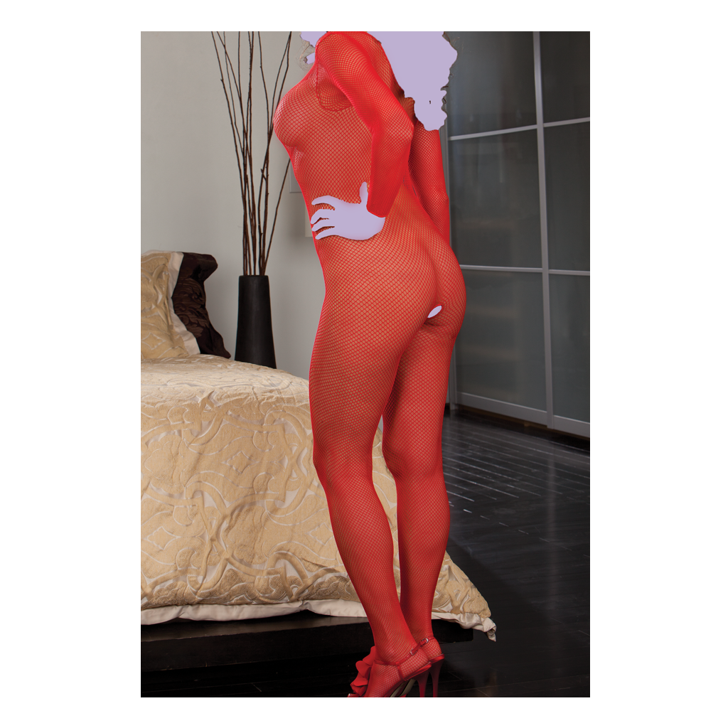 Long Sleeved Fish Net Bodystocking