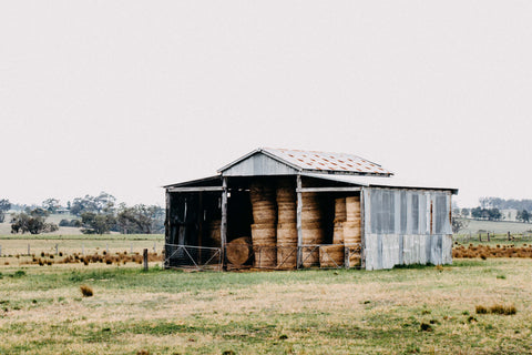 Walcha Shack I B+W Photographic Print