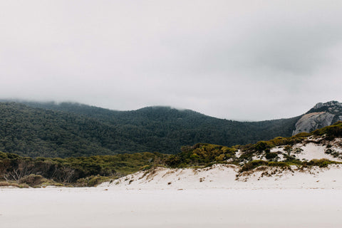 Bay of Fires Beach Lane Photographic Print