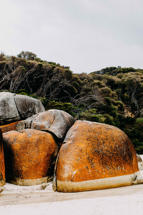 Wilsons Promontory Squeaky Beach VII Photographic Print