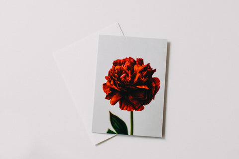 Peony Red Greeting Card