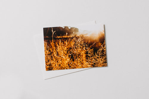 Highland Wild Sunrise Greeting Card