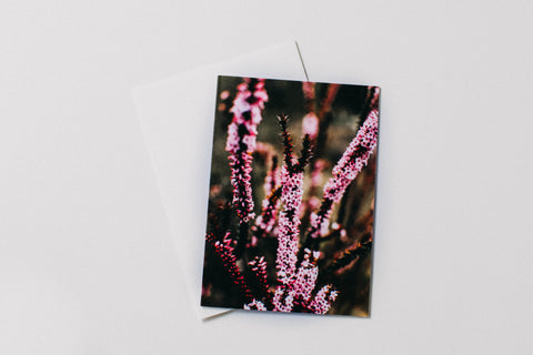 Floral Greeting Card Pack