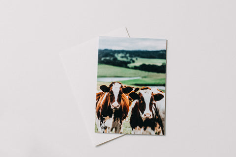 Herd of Sheep Greeting Card