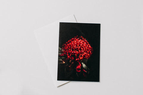Australian Natives Greeting Card Pack