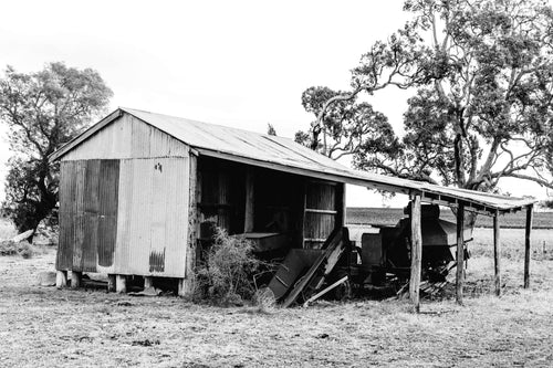 Freestone Shed I B+W Photographic Print