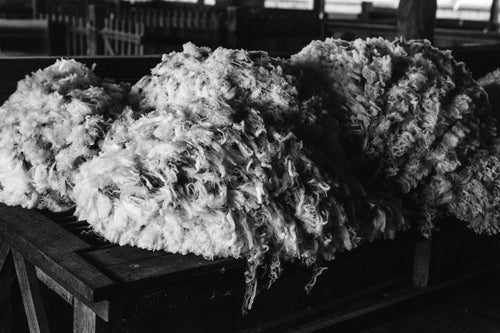 Wool Bundle III B+W Photographic Print